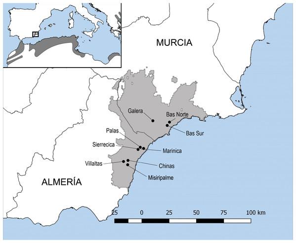 Map of Testudo graeca tortoises sampling sites.