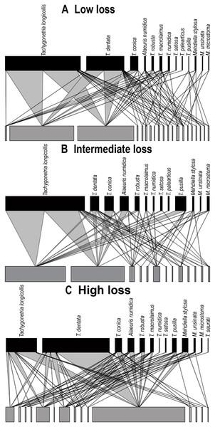Quantitative bipartite plots of the tortoise–oxyurid species ecological networks encompassing different levels of habitat loss.
