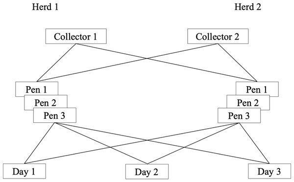 Schematic presentation of a longitudinal study of the reliability of environmental sampling and testing methods to quantify MAP1 in drylot cow pens in 2 California dairies.