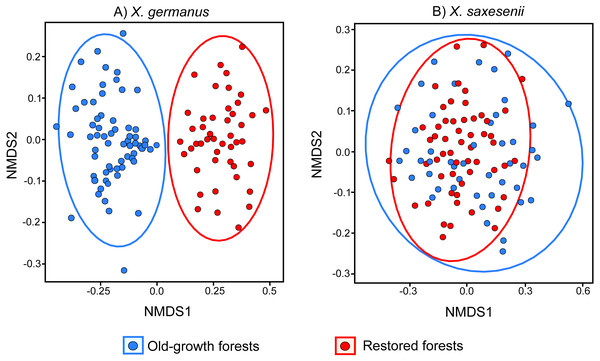 NMDS (Non-metric Multi Dimensional Scaling) analysis of the fungal communities associated with the exotic ambrosia beetle X. germanus (A) and the native ambrosia beetle X. saxesenii (B) in old-growth forests and restored forests.