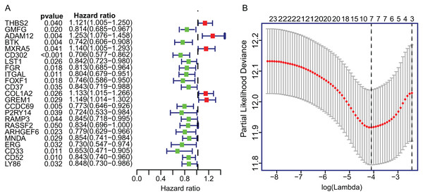The univariate Cox regression and LASSO analysis for prognostic features screening.