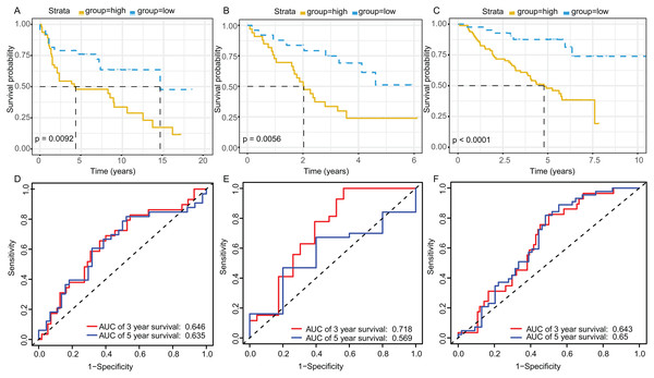 Survival and ROC curves for the three-gene signature in three GEO testing datasets.