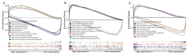 The GSEA enrichment analysis of TME-related gene signature.