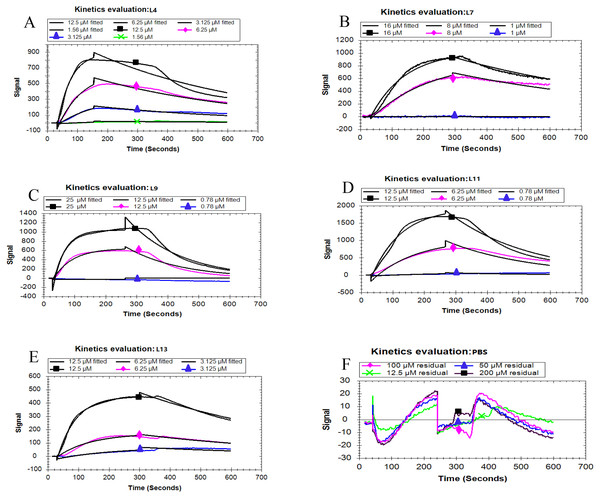 Kinetic analysis between five peptides binding with the PCV2 Cap protein by LSPR.