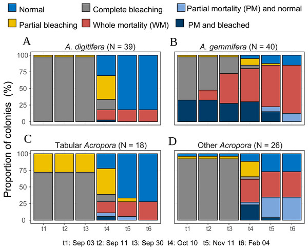 Bleaching and post-bleaching mortality status of Acropora colonies (expressed as percentage of colonies) at each survey.