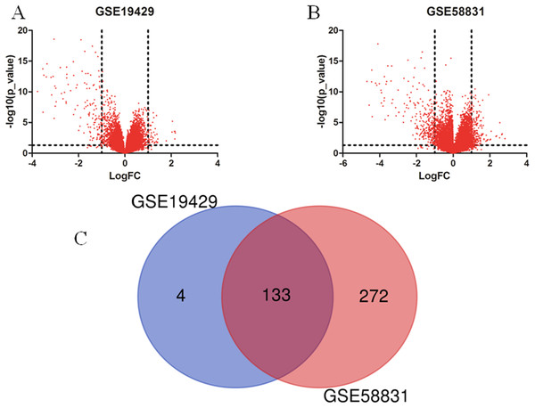 Identification of DEGs in two datasets (GSE19429 and GSE58831).