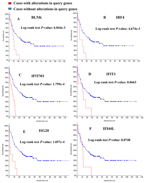 Overall survival analyses of module genes.
