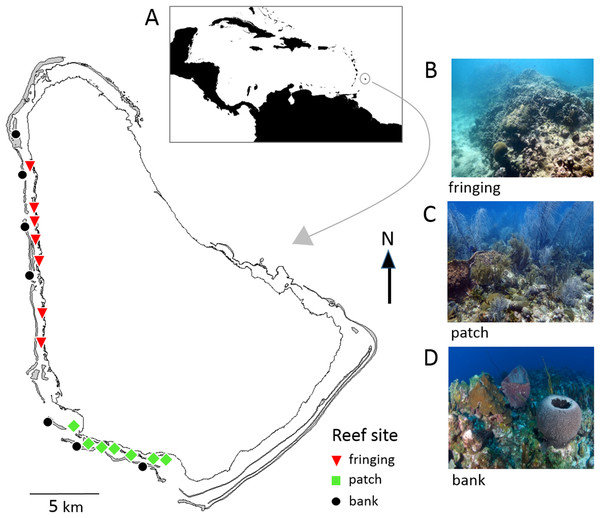Map of Barbados showing locations of the 21 reef survey sites along the west and southwest coasts.