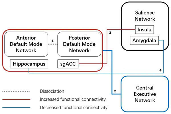 Aberrant functional connectivity between three networks.