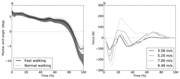 Experimental datasets.