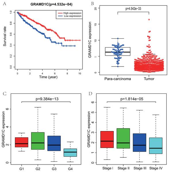 Correlations of GRAMD1C expression with several key clinicopathologic characteristics.
