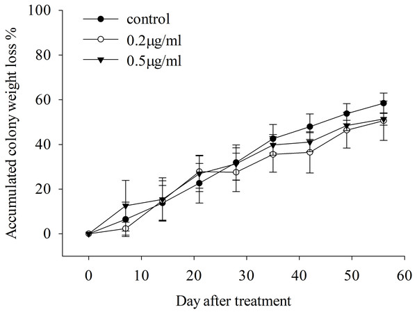Accumulated colony weight loss (mean percentage ± SE) over 56 days after treatment of Solenopsis invicta with different concentrations of triflumezopyrim.