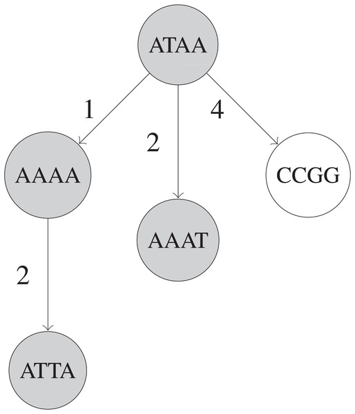 Simplified example of a BK-tree built on five UMIs.