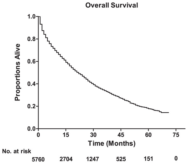 The overall survival for the patients with lung metastases from breast cancer, and the table showing the number at risk for overall survival.
