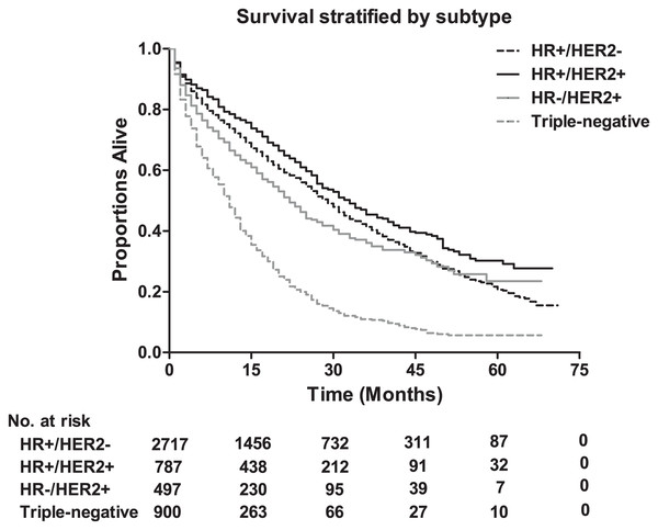 The overall survival according to tumor subtype, and the table showing the number at risk for tumor subtype.
