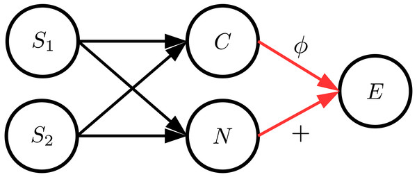 The general structure of the data generation process where C and N are dependent.