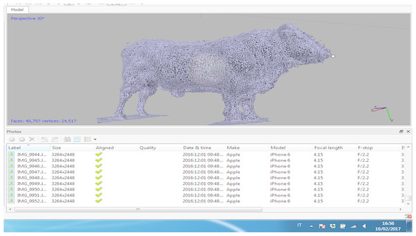 Results from the dense point cloud of the Charolaise bull.