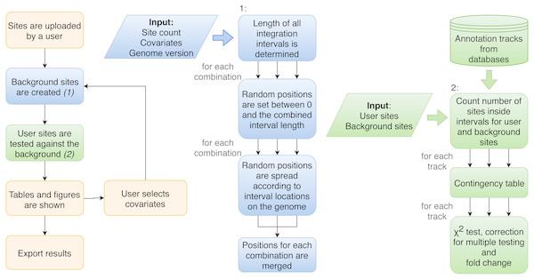 Flowchart of the procedure of analysis performed by Enhort.