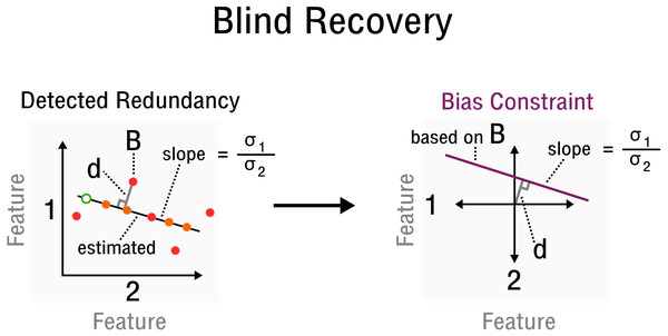 Measurement inference process from detected redundancies to bias constraints required for recovery.