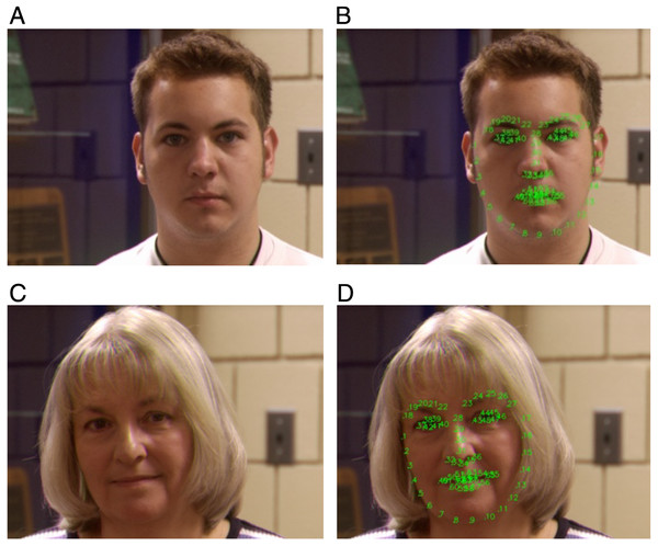 Facial landmarks (68 key points) of Face Recognition Grand Challenge Version 2(FRGC v2.0).