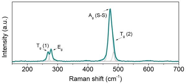 Raman spectrum of hot-pressed NiS2.