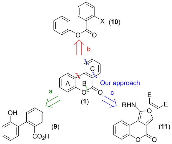 Strategies for the synthesis of benzo[c]coumarins.