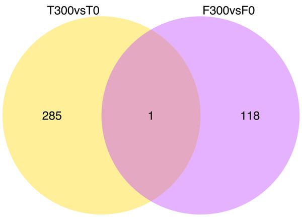 "Venn diagrams showing the number of down-regulate genes of ""T300 vs T0"" and ""F300 vs F0""."