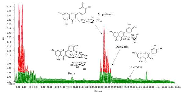 Three-dimensional high-performance liquid chromatogram of Saururus chinensis leaves extract.