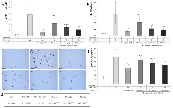 Saururus chinensis (SC) water-extract suppressed ovalbumin and find dust-induced allergic pulmonary disease.