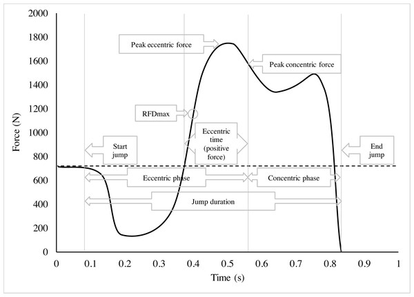 Force-time curve of a countermovement jump.