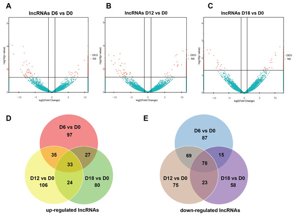 Expression Profiles of lncRNAs.