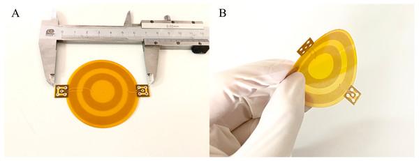 The flexible conformal MIPS sensor.