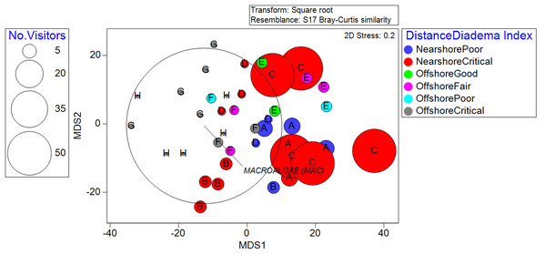 Metric Dimensional Scaling (MDS) plot of transects grouped into localities and plotted with bubbles according to the quantity of observed recreationists.