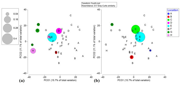 Bubble plots based on PCO analysis describing the spatial patterns of critically endangered coral species among locations.