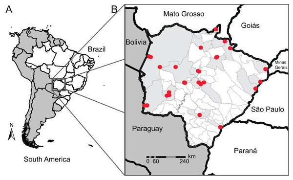 Map of our sampling locations in Mato Grosso do Sul state.