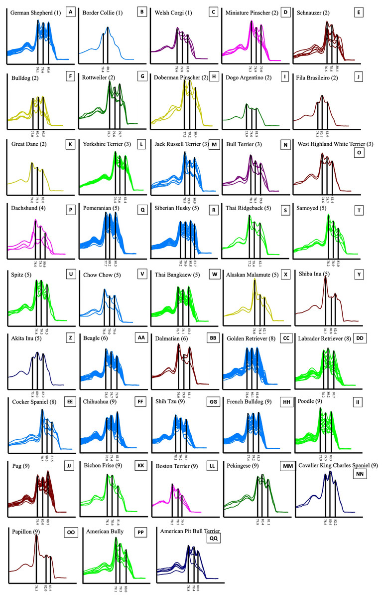 Genetic variations and dog breed identification using ...