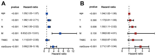Assessment of risk scores and prognostic value of clinical data.