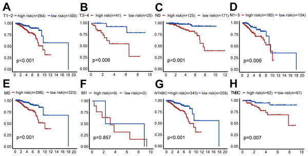 Clinical survival analysis of subgroups' DGRG risk scores for breast invasive ductal carcinoma.