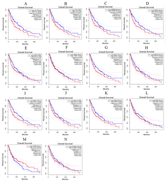 The overall survival curves of hub genes in TCGA database.
