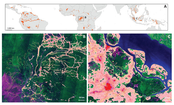 Map of tropical and subtropical peatlands (A) following Leifeld & Menichetti (2018), with close-ups of the Congo Basin (B) and Riau province, Sumatra, Indonesia (C).