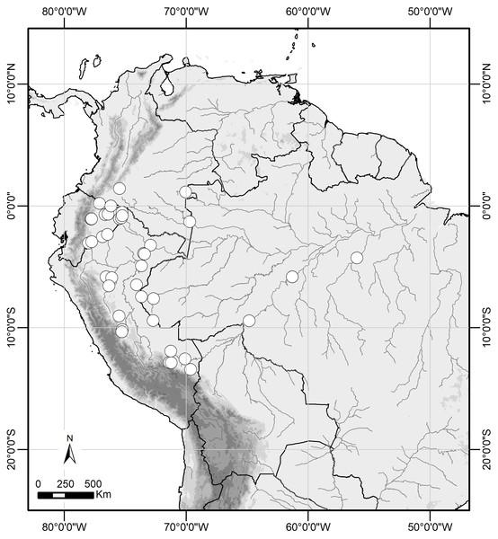 Distribution range of Scriptor sphenophorus n. gen. and n. sp. in the Amazon basin.