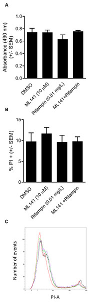 HEK 293-A cell viability and membrane integrity are maintained following cotreatment of ML141 with rifampin.