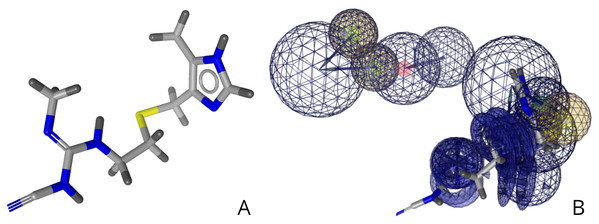 (A) Structure of cimetidine. (B) Relative structure of cimetidine in relation to the developed pharmacophore.