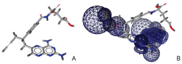 (A) Structure of pralatrexate. (B) Relative structure of pralatrexate in relation to the developed pharmacophore.