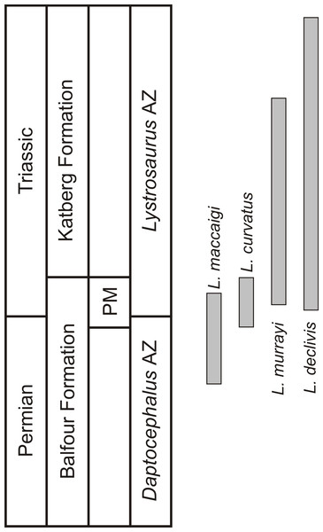Biostratigraphic ranges of the four South African Lystrosaurus species in the Karoo Basin.