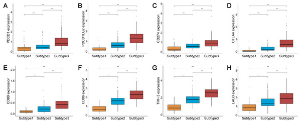 Expression distribution of the eight immune checkpoint genes were all significantly lower and significantly higher in the subtype 1 and subtype 3, respectively.