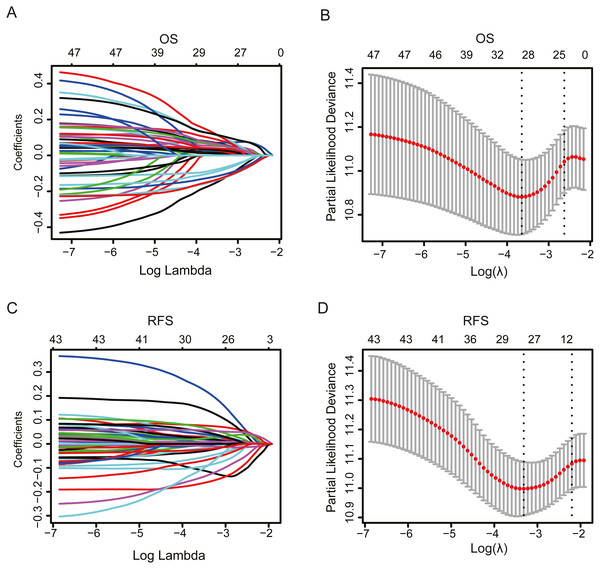 The LASSO Cox regression model for OS and RFS of patients in the TCGA dataset.
