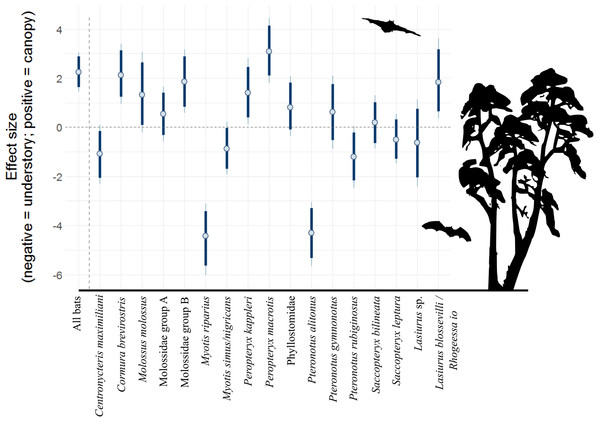 Model coefficient estimates for activity in vertical strata, by bat species/complex.