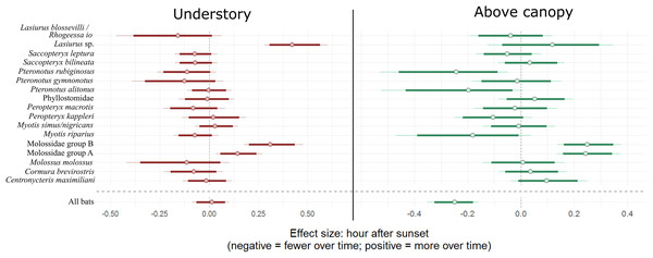 Model coefficient estimates for activity over the course of the night by bat species.