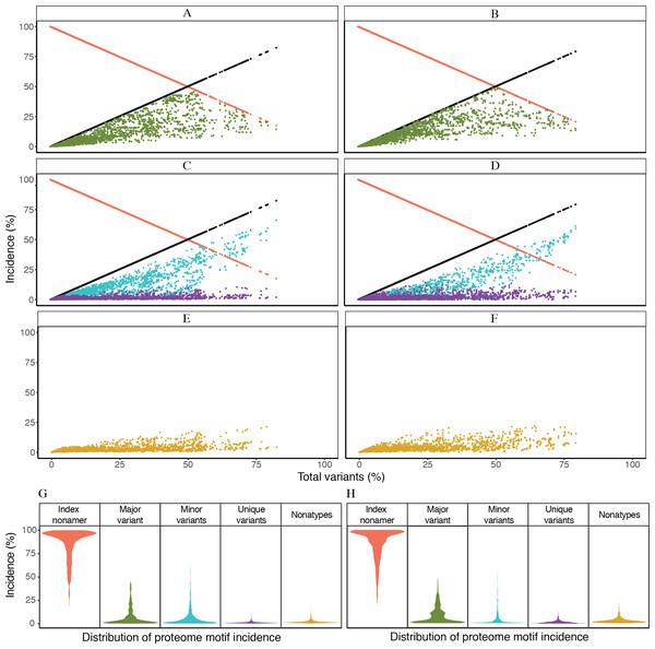 Dynamics of diversity motifs for avian (A, C, E, G) and human (B. D, F, H) H5N1 influenza A virus proteomes.